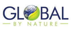 GBN Interim Website